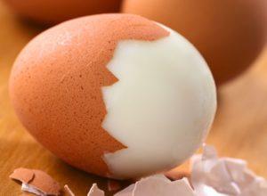 Enlivened Wellness - Egg